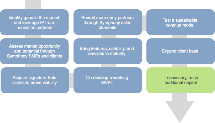 The Symphony Innovation Process