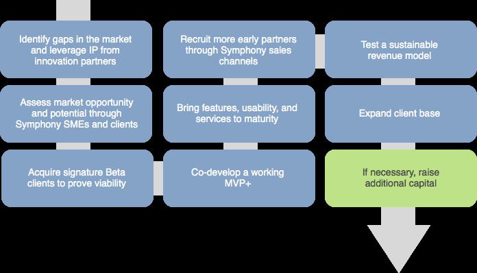 The Symphony Innovation Process